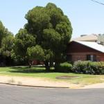 243 W Turney Ave, Phoenix, AZ 85013 | $557,143 | COE 6-26-17